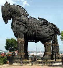 Koń trojański surowy