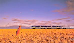 Kangaroo and a train on the plains